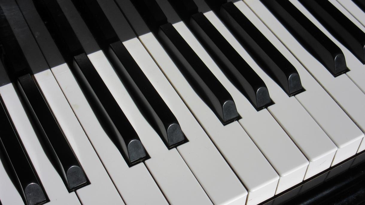 動画などに合うBGMに→美しいピアノソロにします 可愛い動物~お子様用途まで 動画のBGMとしていかがですか?