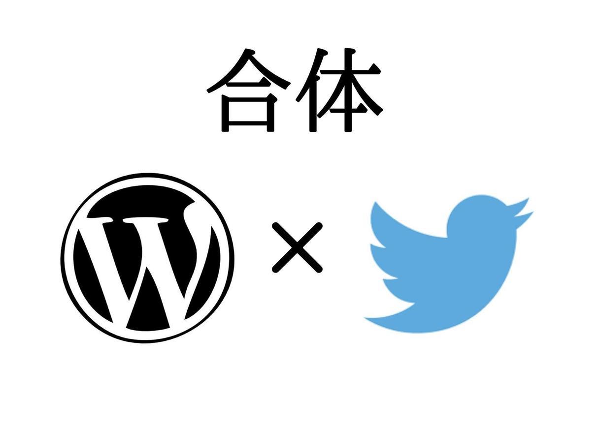 ブログとTwitterを連動させる設定を代行します ブログ初心者でSEO以外のアクセスをもっと増やしたい人へ! イメージ1