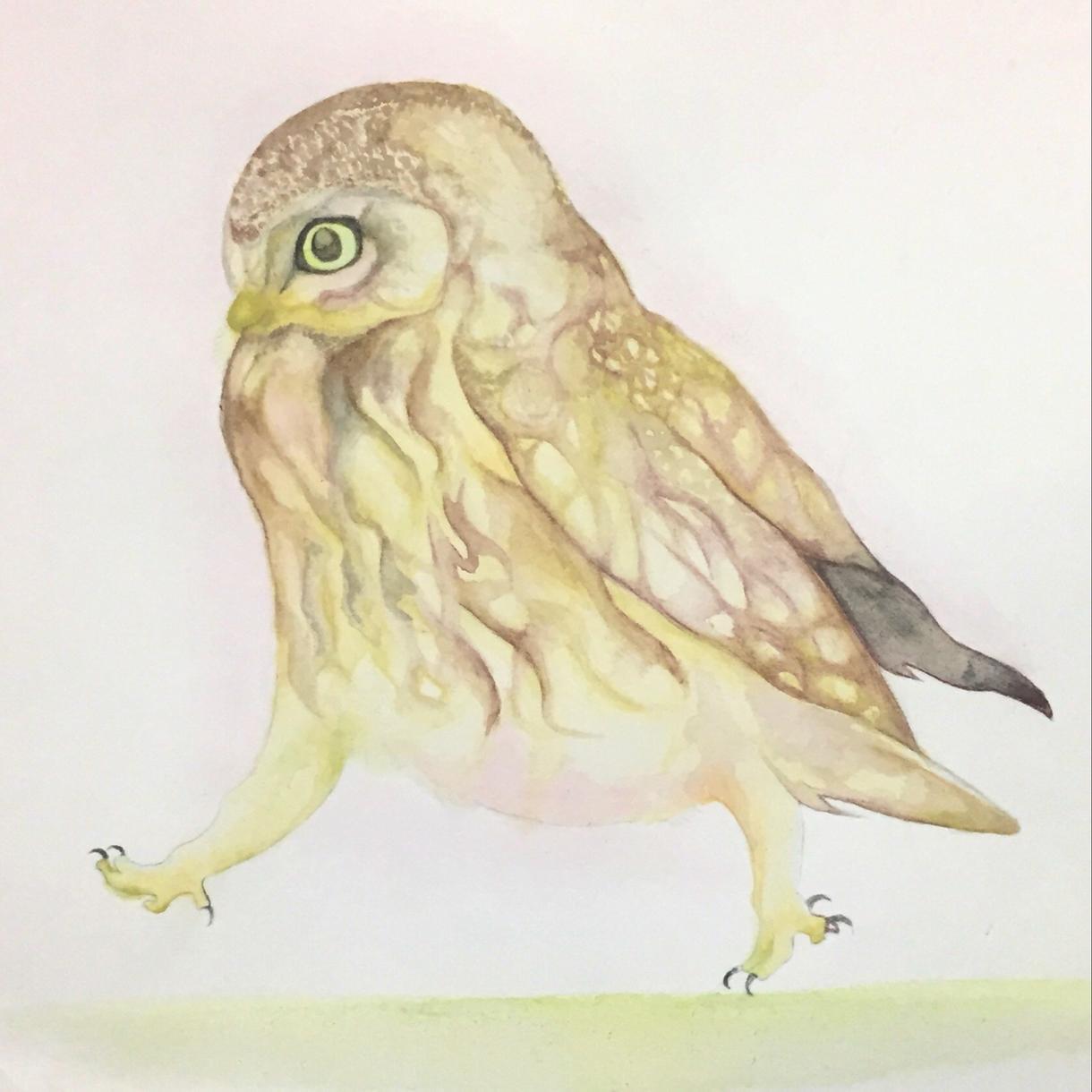 動物や植物、食べ物などなんでも水彩画風に描きます あなたのために