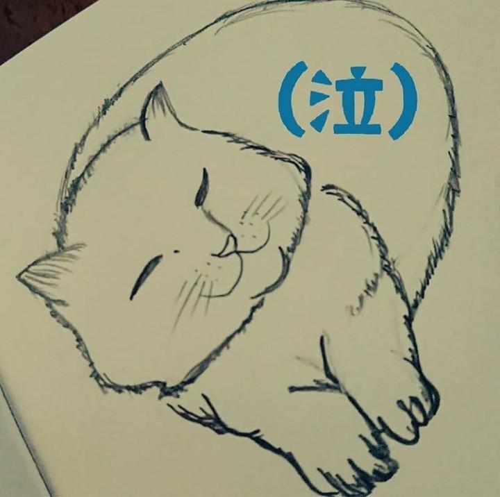 大切な家族である愛猫を描きます アナログイラストで水彩色鉛筆や筆ペンで描いていきます。^^*