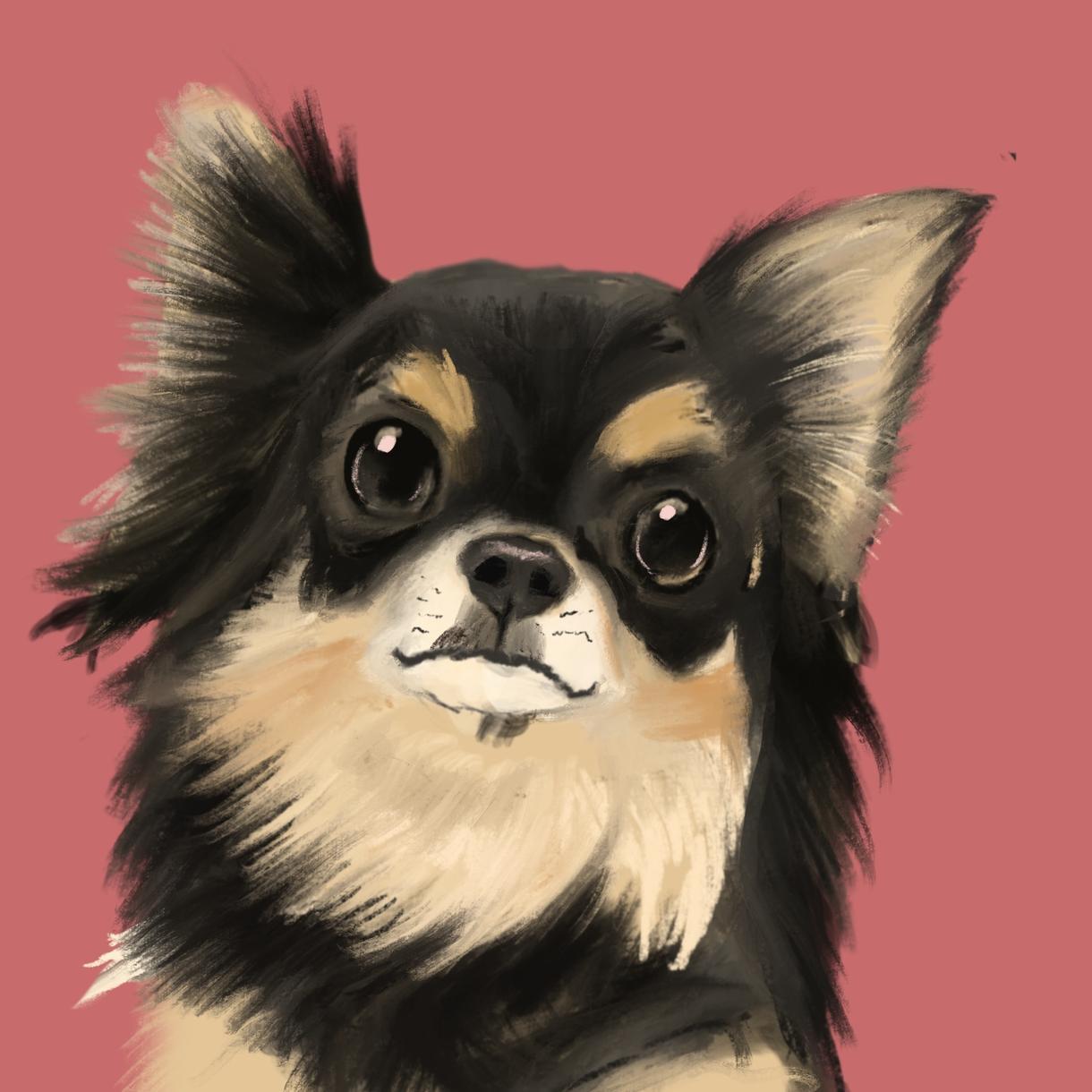 ペットの似顔絵を手描きタッチで短時間でお描きします 土日・平日夜間の対応も可能、スピード納品できます イメージ1