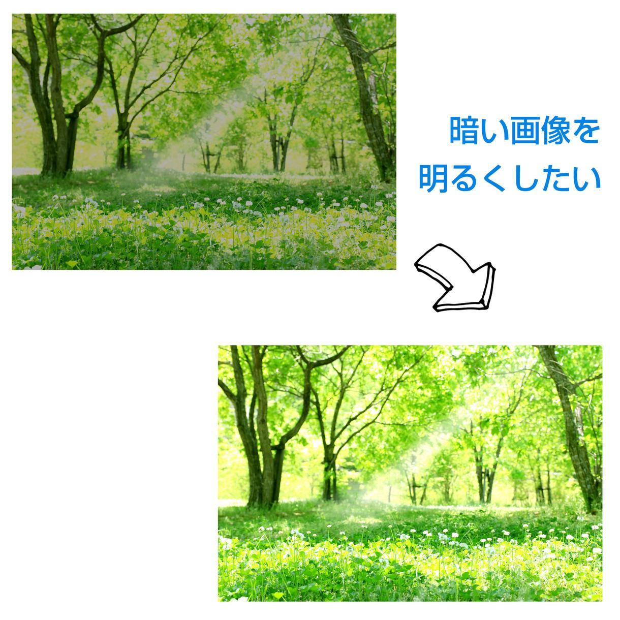 簡単な画像の補正や修正をします 画像が暗くて使いづらい、顔のほくろ消して欲しいなどの画像加工 イメージ1