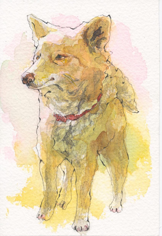 あなたの大事なペットのイラストを描きます 【水彩画】大切なペット達をイラストにしてみませんか?