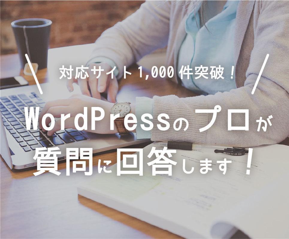 WordPressのプロがどんな質問にも答えます 対応サイト1000件突破。現役エンジニアによる完全サポート! イメージ1
