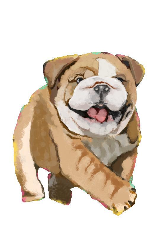 オシャレ★リアル【動物・ペットの似顔絵】描きます 可愛いペットを★オシャレ★なイラストに!!