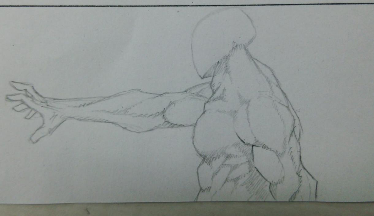 筋肉イラスト承ります 広告、ロゴ、デザインetc..筋肉でインパクトが欲しい方に