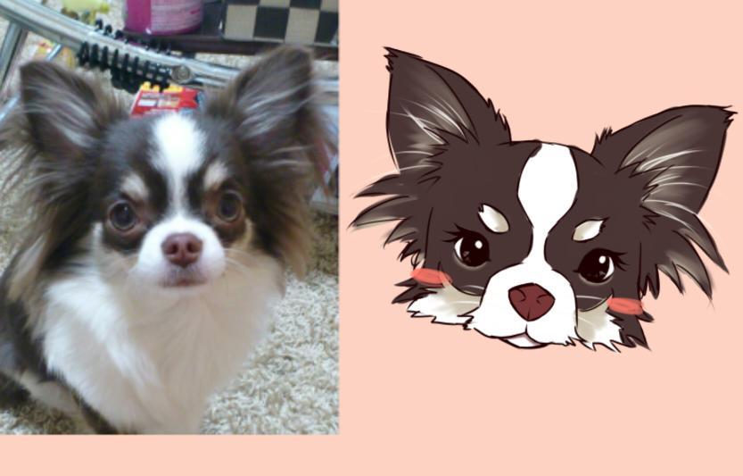 ペットの似顔絵描かせて頂きます グッズ作りや、記念にいかがでしょうか?