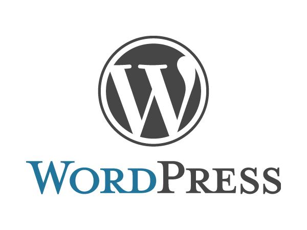 【ランキング入り!】WordPress(ワードプレス)設置代行/スタンダードパッケージ
