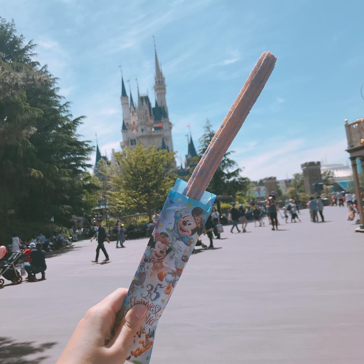 最高な旅行をプランニングします 東京ディズニーリゾート/WDW でステキな思い出を作ろう!