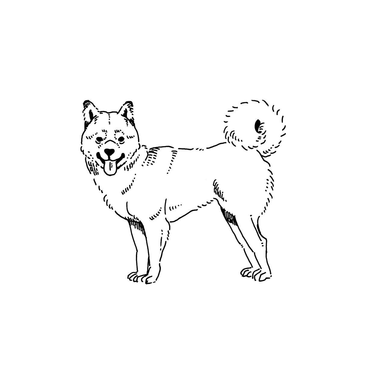 カットイラスト、DM描きます 動物と女の子のイラストが大得意、柔らかな線のイラストです。