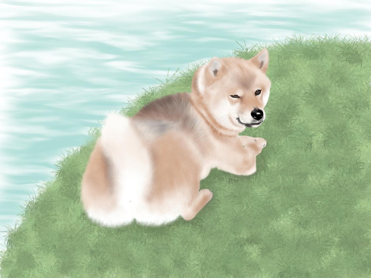 動物の絵を真心込めて描かせていただきます ペットの記念イラストやアイコンなどに! イメージ1