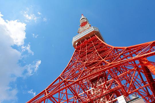 東京であなたが見たい場所の写真や動画撮影代行します 具体的な場所や日時は事前にご相談ください