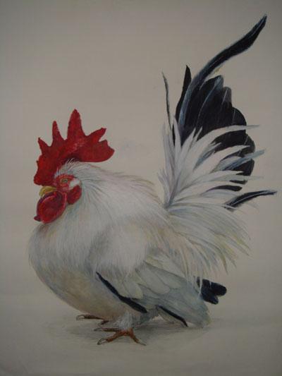 プロの画家が動物・植物を描きます プレゼント用・個人観賞用なんでもOK!