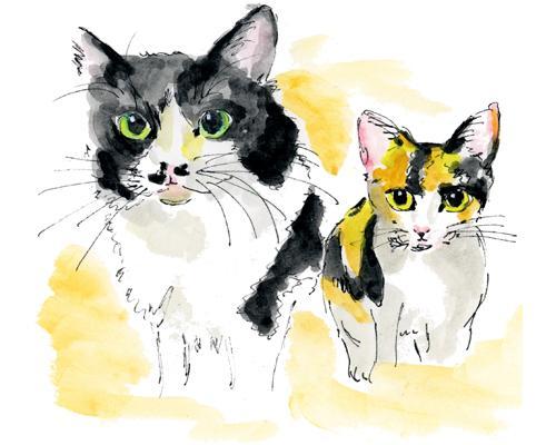 ペットの似顔絵描きます モノクロ、カラーどちらでもご指定OKです。 イメージ1