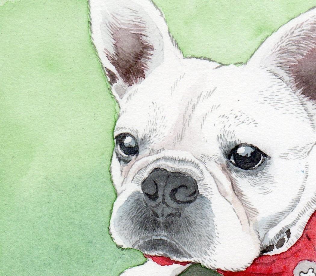 ペットの肖像、リアル似顔絵を原画に描きます 「はがき大」の原画取引のみで、お願いします。