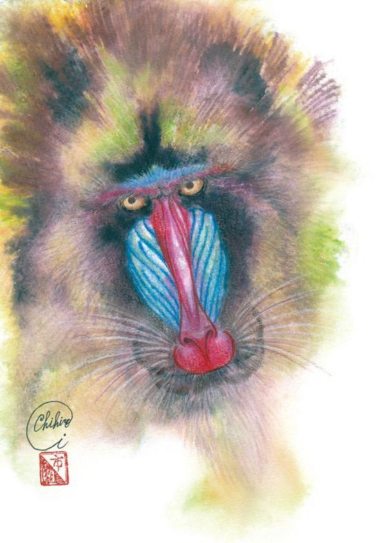 画風B 年賀状用 干支のイラストを承ります 新年のご挨拶は生命感あふれる十二支のイラストで!