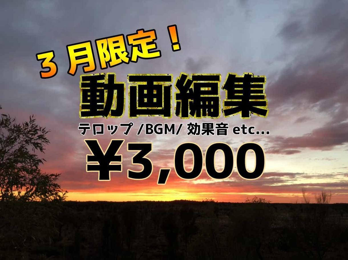 YouTube、その他SNS用の動画編集致します ㊗︎ココナラ初デビュー★10分以内なら一律3000円! イメージ1