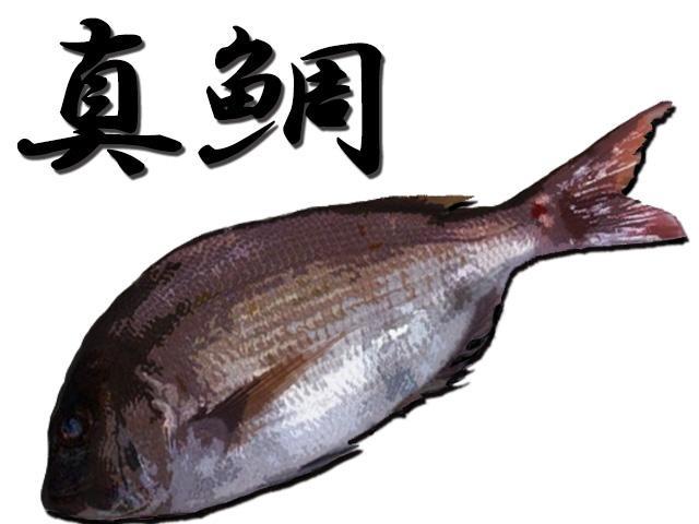 あなたの釣果写真、デジタル魚拓に加工します。