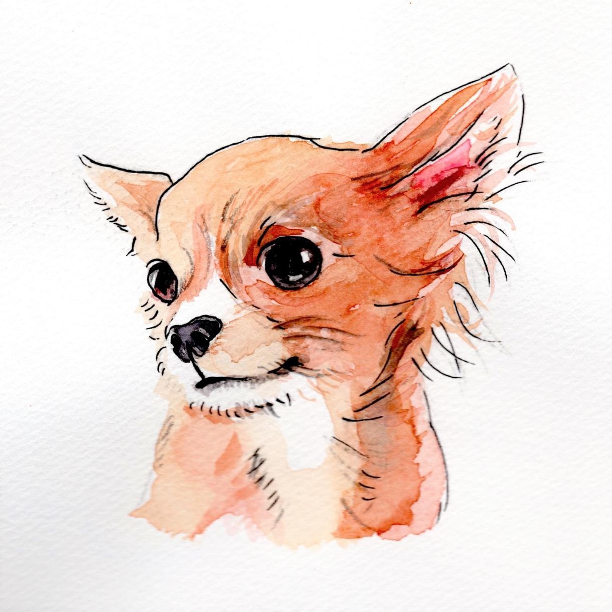 ペットの似顔絵、描きます 心を込めた手描きで、あたたかみのある作品♪