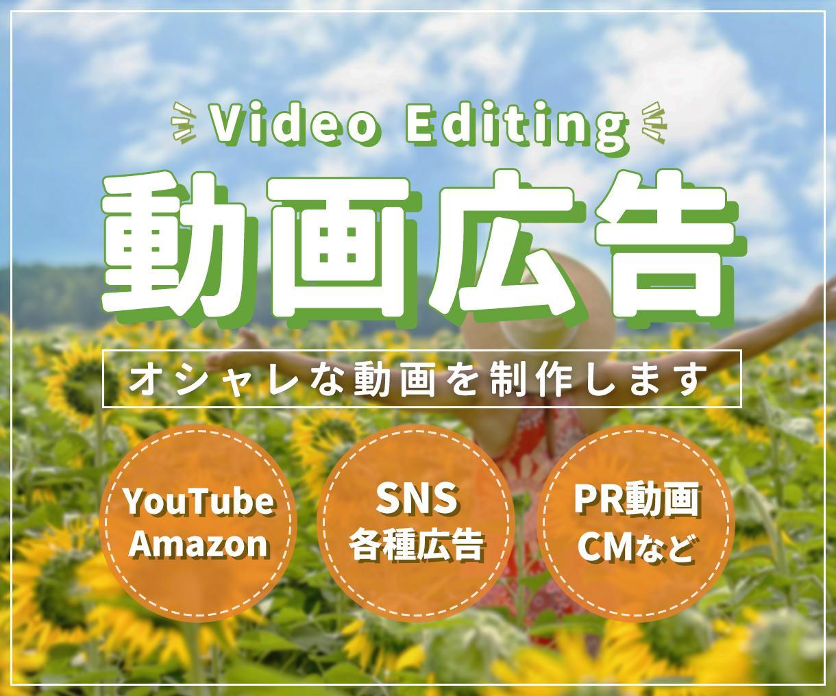 おまかせOK!広告動画を作成します 低価格で高品質な動画を制作します! イメージ1