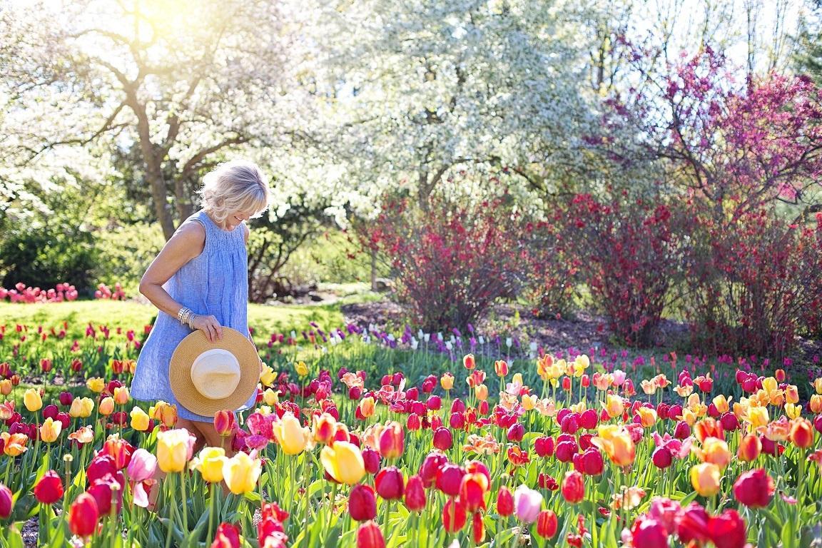 ステキなお庭作りたい!ぴったりな植物オススメします プロ園芸家によるお手軽サービス☆お庭にピッタリな草花をご紹介 イメージ1