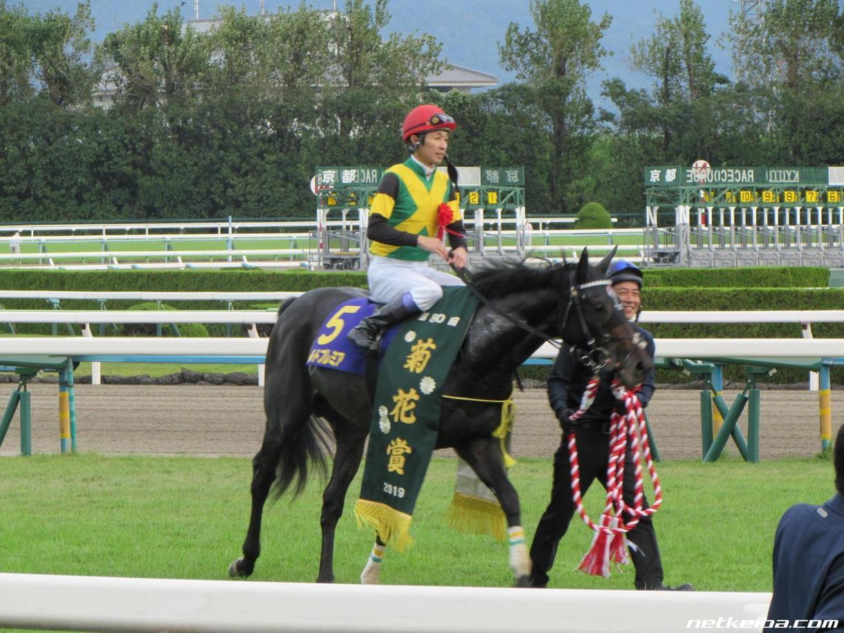 土曜日の中央競馬メインレースの予想をします 注目馬を5~7頭にしぼります。