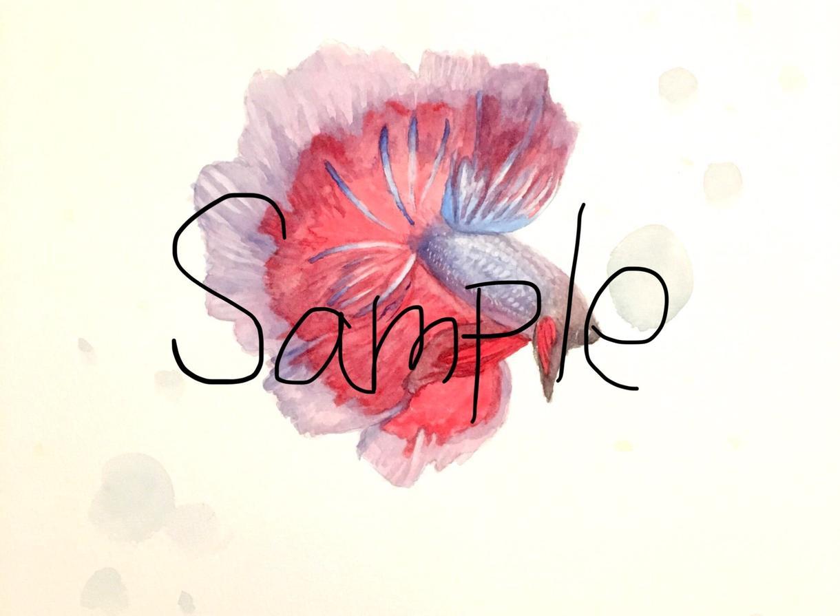 アナログ水彩画でイラスト作製します 透き通るような美しくも可愛らしい雰囲気がお好きな方へ*
