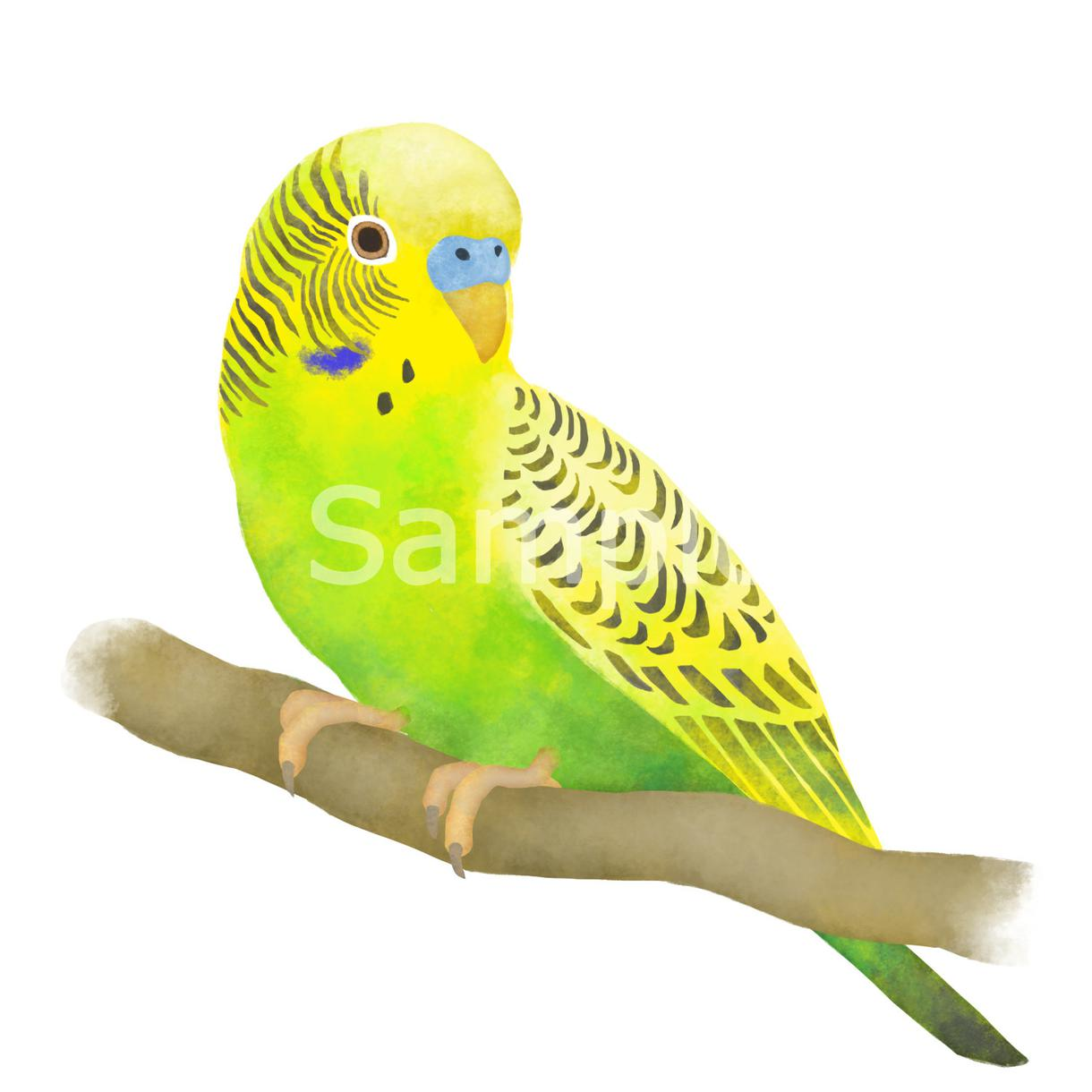 動物のイラストを水彩画風の優しいタッチで制作します ~挿絵やアイコン、プレゼントなどに~