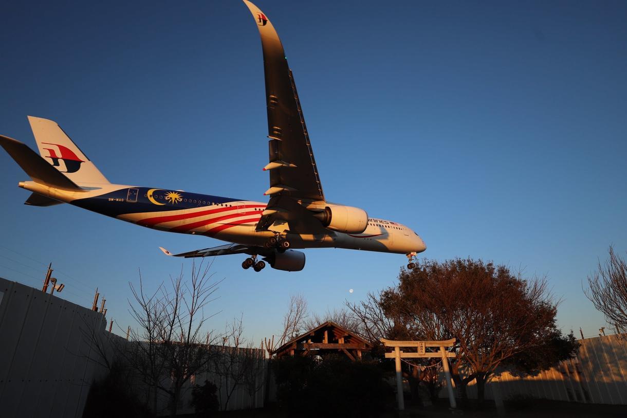 誰でも楽しめる飛行機の見方を教えます 専門的な知識に頼らずに、楽しめる飛行機の見方を教えます!