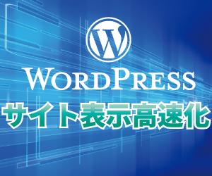 WordPressのサイト表示速度を改善します ページ表示(読み込み)速度が遅くて困っている方へ イメージ1