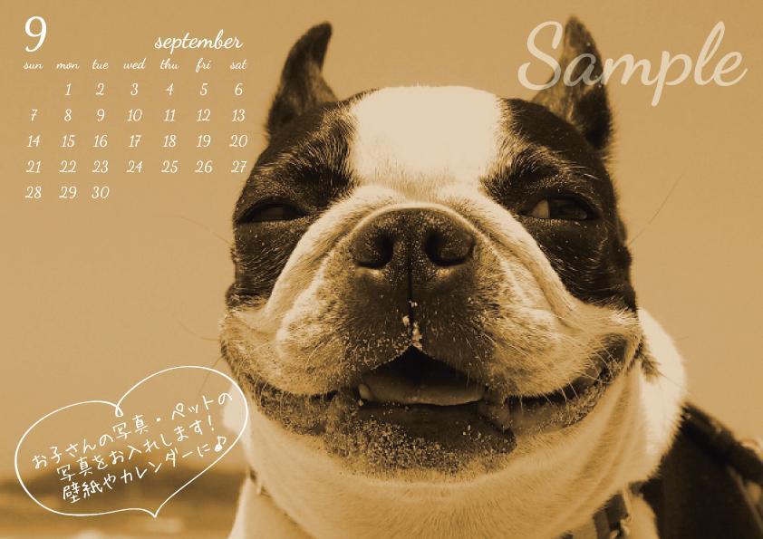 お子様の写真や、ペットの写真で毎月のカレンダーを作ります☆2ヶ月分のカレンダーもOK!