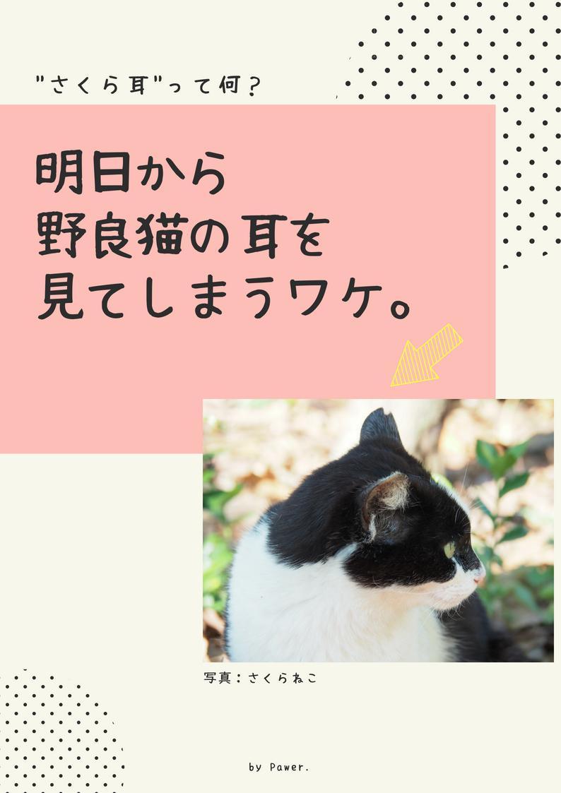 動物愛護に関する啓蒙のチラシをデザインします 若者向け・モダンなイメージをご希望の方へ
