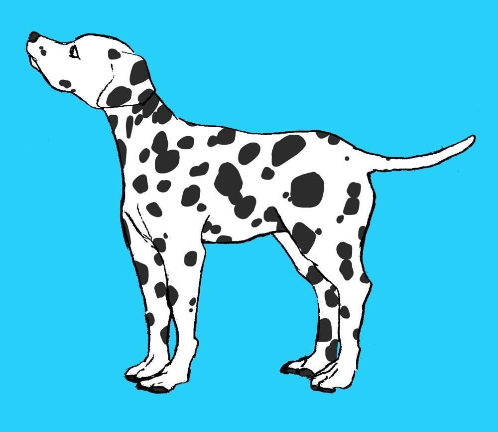 犬専用/少しリアルで漫画タッチのイラストを描きます SNSのアイコンやヘッダー、携帯の壁紙等…!