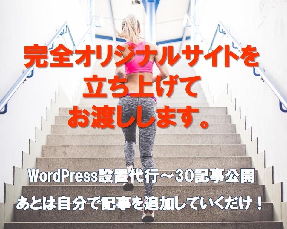 WordPressブログ30記事入れて立ち上げます アフィリサイトを即開始したい・時間短縮したい方へ