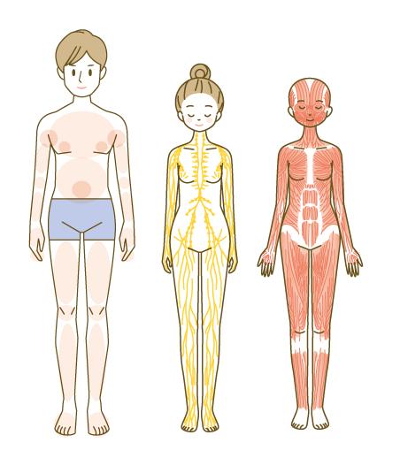 各種ポーズの細かい指示のある人物イラスト描きます 医療・介護・エステのポーズなど イメージ1