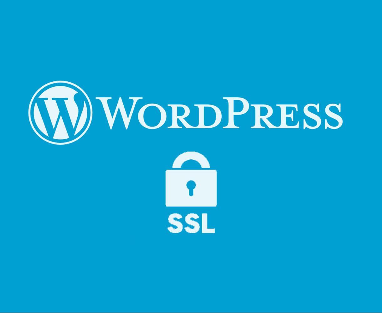 Wordpress完全SSL化[https]します 全部おまかせでお願いしたい人向け!SNSカウントも対応!