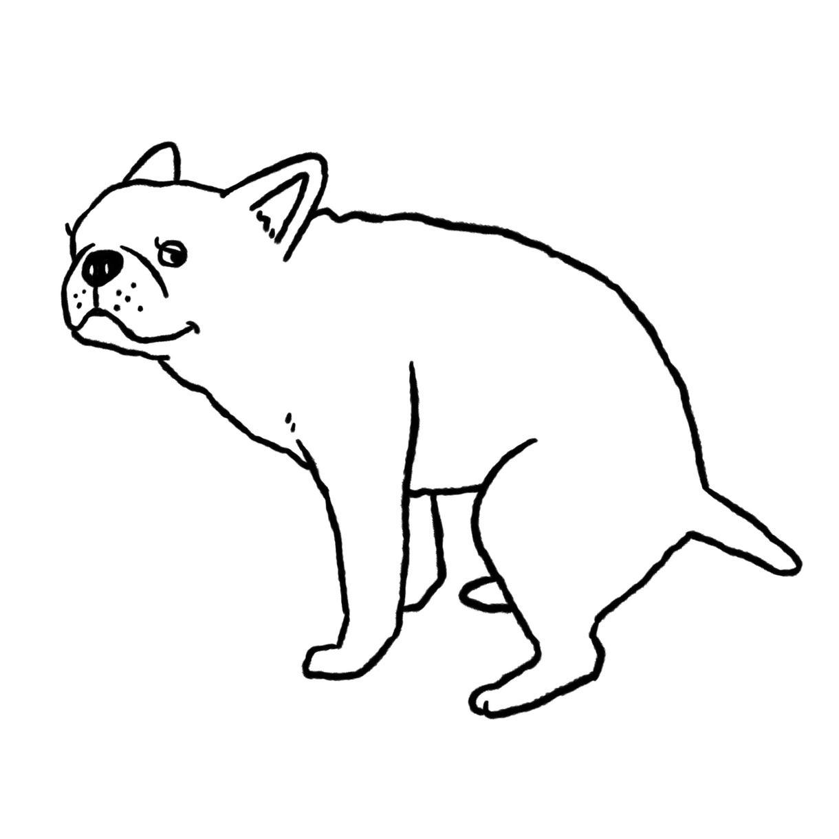 ペット、動物のイラスト描きます ポップでチャーミングな雰囲気のイラスト イメージ1