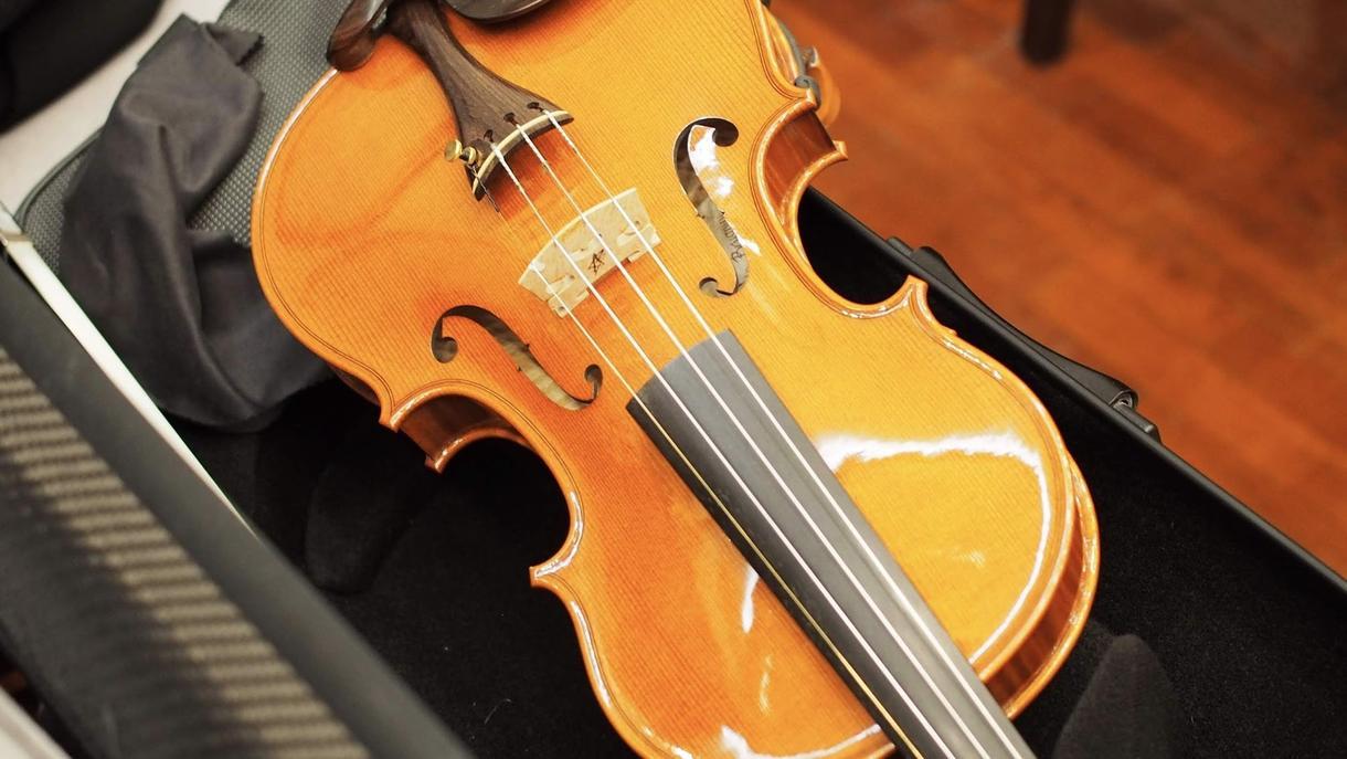ヴァイオリン生演奏を録音・提供します 生演奏ならではのリアルなストリングス音色をご希望の方へ イメージ1