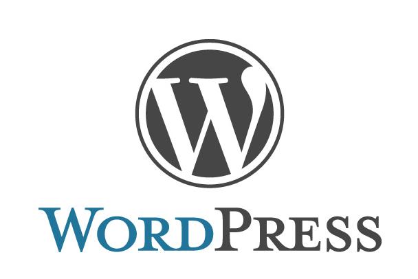 WordPress初期設定代行させて頂きます ワードプレスで副業をお考えのあなたへ!