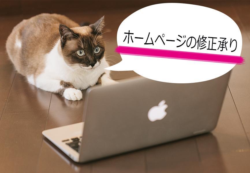 ホームページ制作・管理などでお困りの方へ、Webサイトの修正を1ヶ所承ります。