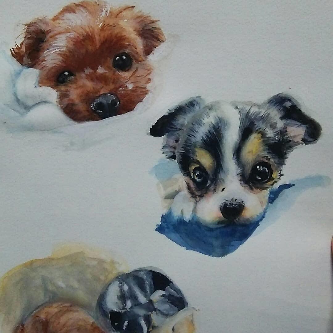 大好きなペットなどの似顔絵描きます お部屋に写真とは違ったアートをとりいれたいかた