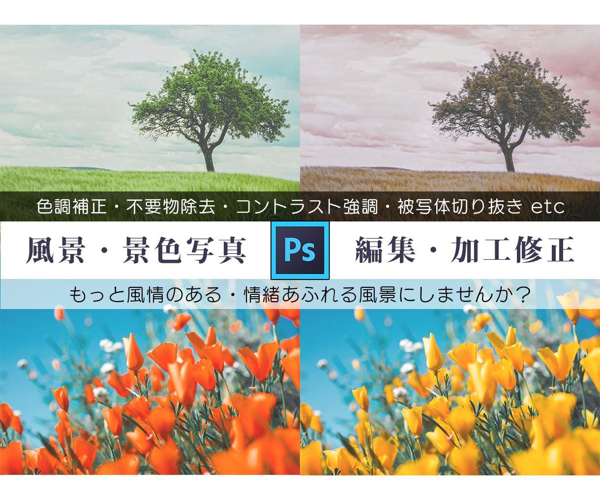 風景レタッチ♪不要物除去・色調補正・修正を承ります 雰囲気のある1枚に♪修正・加工・補正・不要物除去はお任せ♪ イメージ1