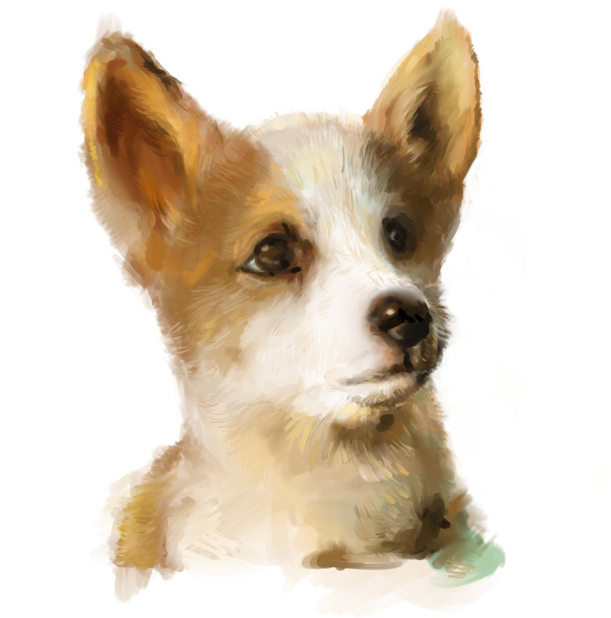 かわいいペットや動物のリアルイラストを描きます プレゼントやお部屋のインテリアにいかがでしょうか? イメージ1