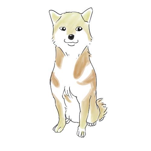 ペット 動物 水彩系 SNSなどで使うプロフィール画像の制作します