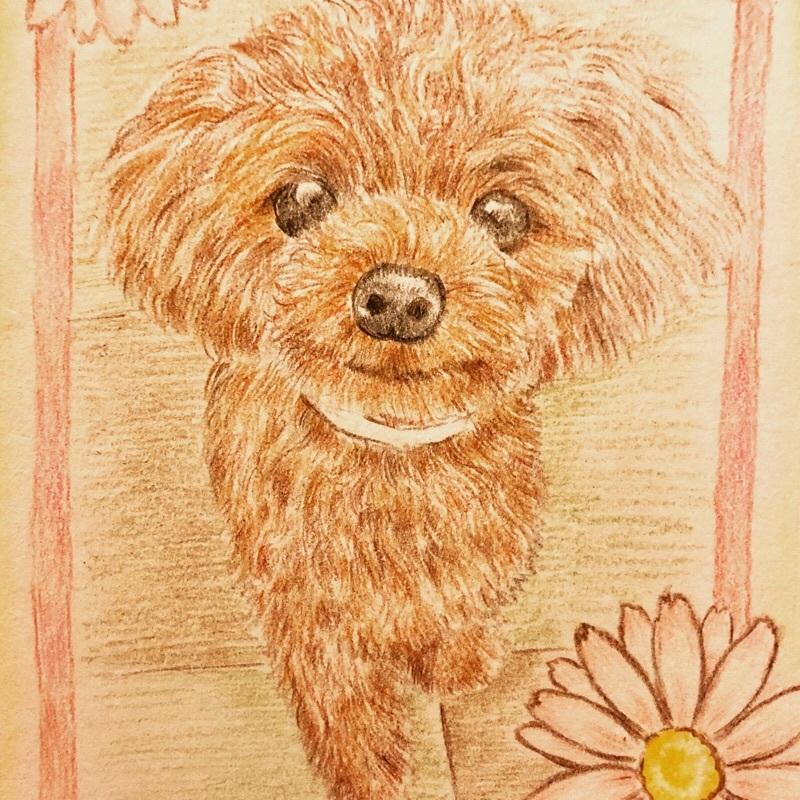 犬猫、小動物のイラストを色鉛筆で描きます プレゼントや記念に★ふんわり優しい雰囲気★