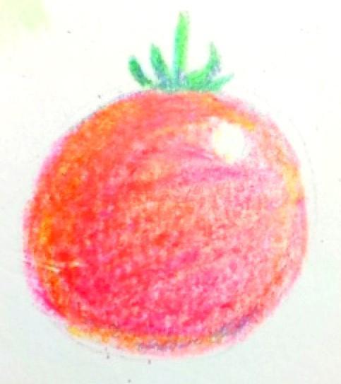 ほんわか✽色鉛筆で【優しい】イラストを描きます✽癒し