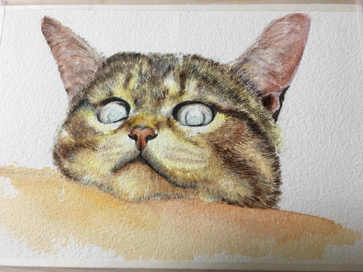 ペットの絵、描きます かわいいペットの絵を飾りませんか?プレゼントにも◎