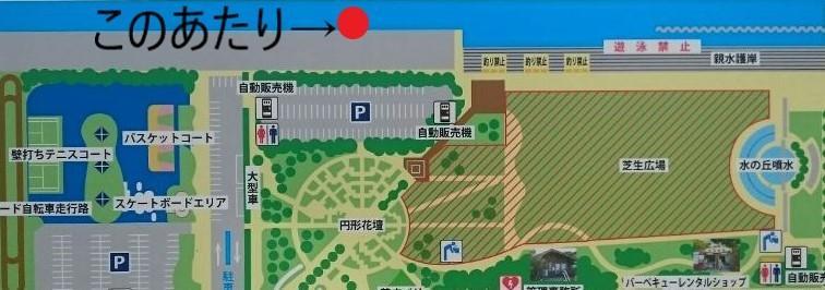 横須賀うみかぜ公園の海中動画(魚影あり)を売ります うみかぜ公園で釣りをしている人で海中の様子を見たいあなた