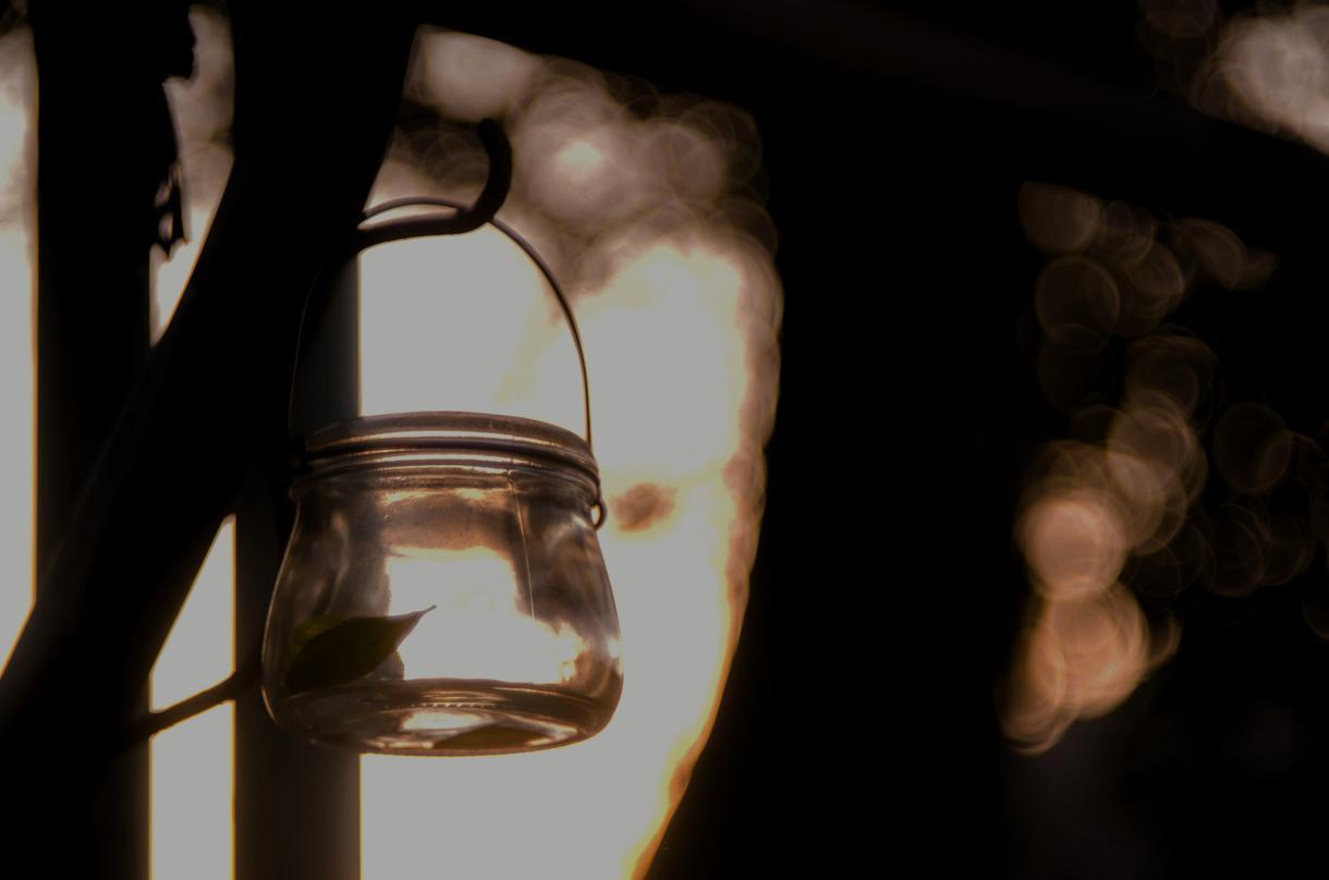 逆光などで黒く潰れてしまった写真を補正します 逆光などで思い出の写真が台無しになってしまった人向け!!