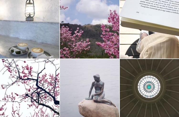 Instagramのアカウントに統一性を持たせます 画像編集やレイアウト考察によってオシャレな雰囲気を作ります!